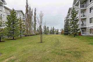 Photo 31: 310 13710 150 Avenue in Edmonton: Zone 27 Condo for sale : MLS®# E4214301