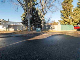 Photo 42: 53 MORELAND Crescent: Sherwood Park House for sale : MLS®# E4220325