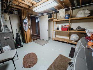 Photo 38: 53 MORELAND Crescent: Sherwood Park House for sale : MLS®# E4220325