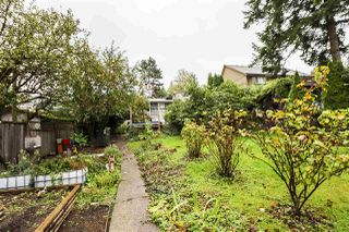 Photo 28: 10715 127A Street in Surrey: Cedar Hills House for sale (North Surrey)  : MLS®# R2508984