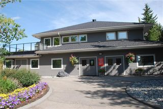 Photo 30: 386 MOUNTAIN PARK Drive SE in Calgary: McKenzie Lake Detached for sale : MLS®# C4265504