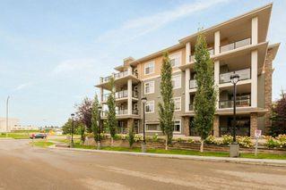 Photo 25: 248 11517 ELLERSLIE Road in Edmonton: Zone 55 Condo for sale : MLS®# E4173384