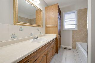 Photo 31: 10234 73 Street in Edmonton: Zone 19 House for sale : MLS®# E4181836