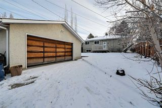 Photo 8: 10234 73 Street in Edmonton: Zone 19 House for sale : MLS®# E4181836