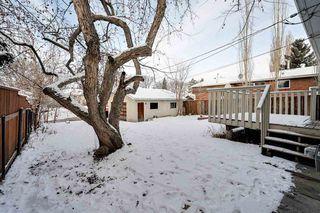 Photo 5: 10234 73 Street in Edmonton: Zone 19 House for sale : MLS®# E4181836