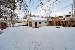 Photo 6: 10234 73 Street in Edmonton: Zone 19 House for sale : MLS®# E4181836