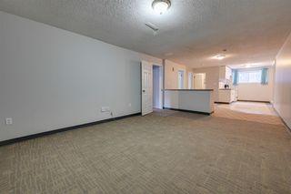 Photo 34: 10234 73 Street in Edmonton: Zone 19 House for sale : MLS®# E4181836