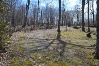 Photo 10: 195 Campbell Beach Road in Kawartha Lakes: Rural Carden House (Bungalow) for sale : MLS®# X4741548
