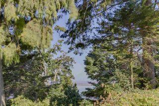 Photo 6: 172 GRAHAM Drive in Delta: English Bluff House for sale (Tsawwassen)  : MLS®# R2485392