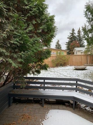 Photo 40: 11736 39A Avenue in Edmonton: Zone 16 House for sale : MLS®# E4216683
