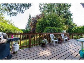 Photo 16: 32678 MARSHALL Road in Abbotsford: Abbotsford West House for sale : MLS®# R2393165