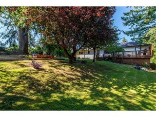 Photo 19: 32678 MARSHALL Road in Abbotsford: Abbotsford West House for sale : MLS®# R2393165