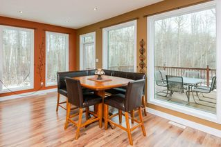 Photo 10: 24 55220 Range Road 13: Rural Lac Ste. Anne County House for sale : MLS®# E4180032