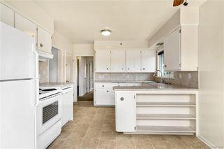 Photo 8: 195 Homer Rd in Saanich: SW Tillicum Single Family Detached for sale (Saanich West)  : MLS®# 844368