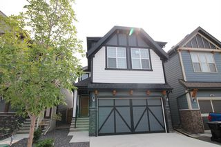 Main Photo: 236 MASTERS Crescent SE in Calgary: Mahogany Detached for sale : MLS®# A1034932