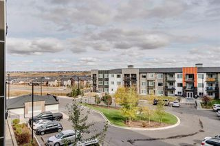 Photo 20: 216 8 Sage Hill Terrace NW in Calgary: Sage Hill Apartment for sale : MLS®# A1042206