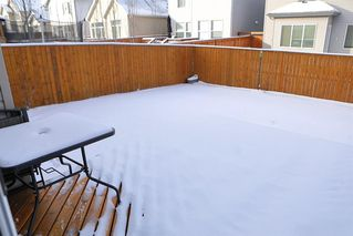 Photo 38: 109 Copperpond Green SE in Calgary: Copperfield Detached for sale : MLS®# A1059161