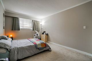 "Photo 13: 311 12096 222 Street in Maple Ridge: West Central Condo for sale in ""Canuck Plaza"" : MLS®# R2528017"