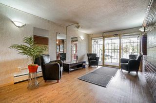 "Photo 5: 311 12096 222 Street in Maple Ridge: West Central Condo for sale in ""Canuck Plaza"" : MLS®# R2528017"