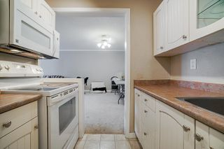 "Photo 12: 311 12096 222 Street in Maple Ridge: West Central Condo for sale in ""Canuck Plaza"" : MLS®# R2528017"