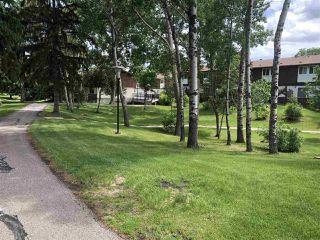 Photo 29: 17525 77 Avenue in Edmonton: Zone 20 Townhouse for sale : MLS®# E4166599