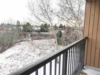 Photo 16: 305 4601 131 Avenue in Edmonton: Zone 35 Condo for sale : MLS®# E4181478