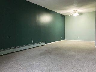 Photo 7: 305 4601 131 Avenue in Edmonton: Zone 35 Condo for sale : MLS®# E4181478