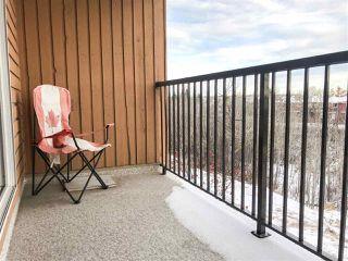Photo 14: 305 4601 131 Avenue in Edmonton: Zone 35 Condo for sale : MLS®# E4181478