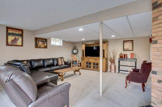 Photo 28: 169 52039 RGE RD 213: Rural Strathcona County House for sale : MLS®# E4219889