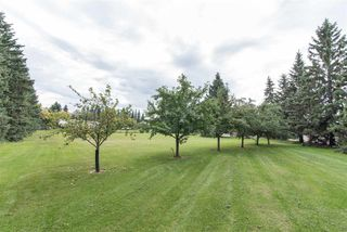 Photo 24: 18951 121 Avenue in Edmonton: Zone 40 House for sale : MLS®# E4173920