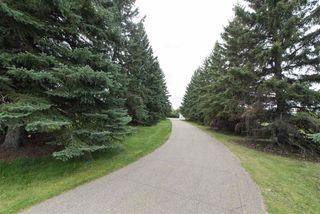 Photo 2: 18951 121 Avenue in Edmonton: Zone 40 House for sale : MLS®# E4173920