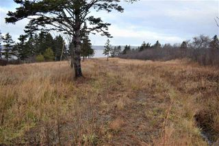 Photo 5: NO 101 Highway in Brighton: 401-Digby County Vacant Land for sale (Annapolis Valley)  : MLS®# 201927416