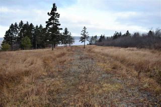 Photo 6: NO 101 Highway in Brighton: 401-Digby County Vacant Land for sale (Annapolis Valley)  : MLS®# 201927416