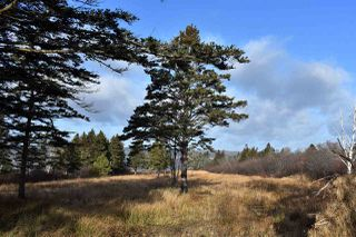 Photo 3: NO 101 Highway in Brighton: 401-Digby County Vacant Land for sale (Annapolis Valley)  : MLS®# 201927416