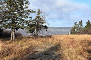 Photo 2: NO 101 Highway in Brighton: 401-Digby County Vacant Land for sale (Annapolis Valley)  : MLS®# 201927416