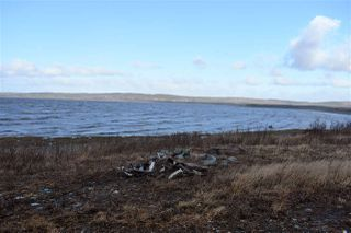 Photo 4: NO 101 Highway in Brighton: 401-Digby County Vacant Land for sale (Annapolis Valley)  : MLS®# 201927416