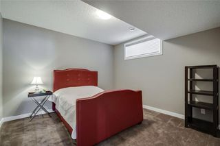 Photo 43: 133 SAGE MEADOWS Circle NW in Calgary: Sage Hill Detached for sale : MLS®# A1041024
