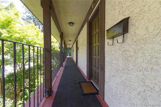 Photo 3: 4 210 Douglas Street in VICTORIA: Vi James Bay Row/Townhouse for sale (Victoria)  : MLS®# 413355
