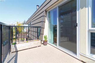 Photo 19: 4 210 Douglas Street in VICTORIA: Vi James Bay Row/Townhouse for sale (Victoria)  : MLS®# 413355