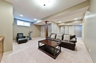 Photo 24: 125 COUGARSTONE Manor SW in Calgary: Cougar Ridge Detached for sale : MLS®# A1019561