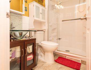 Photo 16: 6032 189 Street in Edmonton: Zone 20 House for sale : MLS®# E4167841
