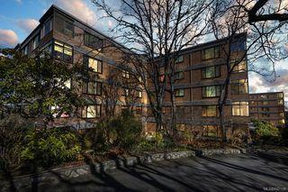 Photo 6: 203 2920 Cook St in Victoria: Vi Mayfair Condo Apartment for sale : MLS®# 842108