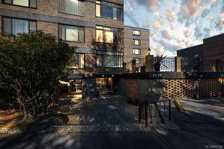 Photo 5: 203 2920 Cook St in Victoria: Vi Mayfair Condo Apartment for sale : MLS®# 842108