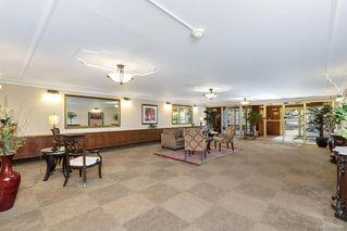 Photo 7: 203 2920 Cook St in Victoria: Vi Mayfair Condo Apartment for sale : MLS®# 842108