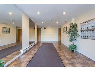 Photo 1: 210 615 NORTH Road in Coquitlam: Coquitlam West Condo for sale : MLS®# R2490960