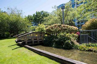 """Photo 22: 213 525 WHEELHOUSE Square in Vancouver: False Creek Condo for sale in """"Henley Court"""" (Vancouver West)  : MLS®# R2510479"""