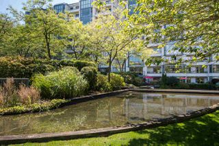 """Photo 21: 213 525 WHEELHOUSE Square in Vancouver: False Creek Condo for sale in """"Henley Court"""" (Vancouver West)  : MLS®# R2510479"""