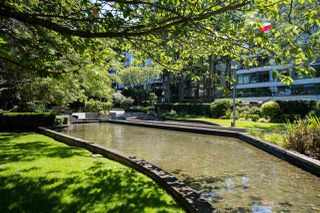 """Photo 24: 213 525 WHEELHOUSE Square in Vancouver: False Creek Condo for sale in """"Henley Court"""" (Vancouver West)  : MLS®# R2510479"""