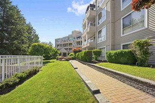 "Photo 1: 317 11605 227 Street in Maple Ridge: East Central Condo for sale in ""The Hillcrest"" : MLS®# R2524705"