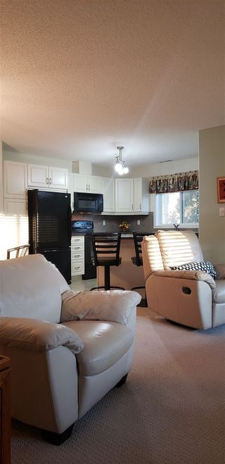 Photo 9: 243 279 SUDER GREENS Drive in Edmonton: Zone 58 Condo for sale : MLS®# E4175448